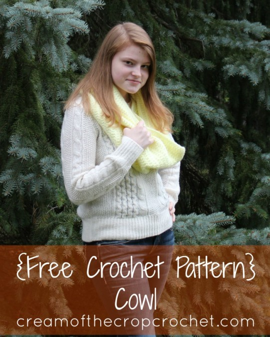 Cream Of The Crop Crochet ~ Cowl Pattern {Free Crochet Pattern}