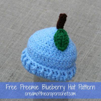 Preemie Newborn Blueberry Hat Crochet Pattern