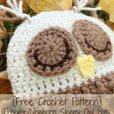 Preemie Newborn Sleepy Owl Hat Crochet Pattern