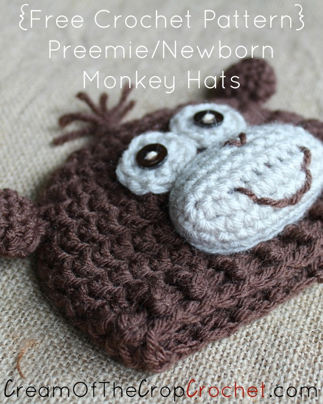 Preemie Newborn Monkey Hat Crochet Pattern | Cream Of The Crop Crochet