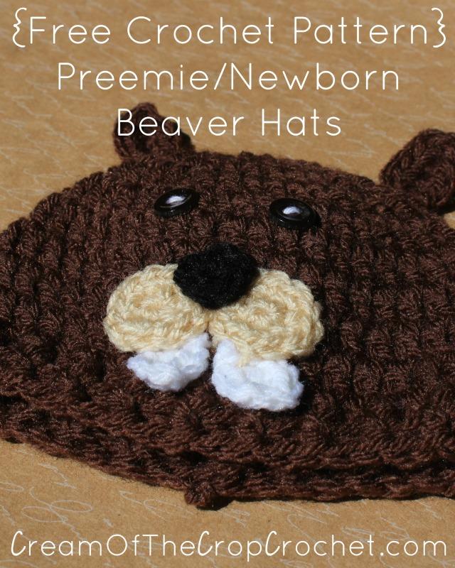 Preemie Newborn Beaver Hat Crochet Pattern Cream Of The Crop Crochet