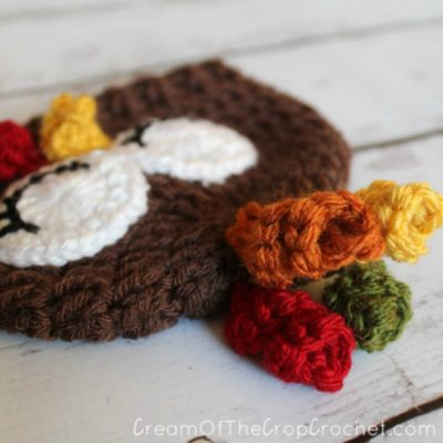 Preemie Newborn Turkey Hat Crochet Pattern