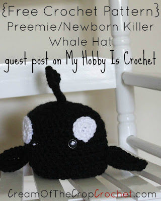 Guest Post on My Hobby Is Crochet