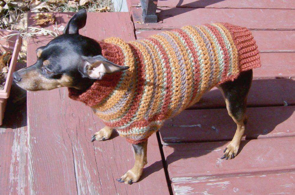 Autumn Stripes Crochet Min Pin Sweater