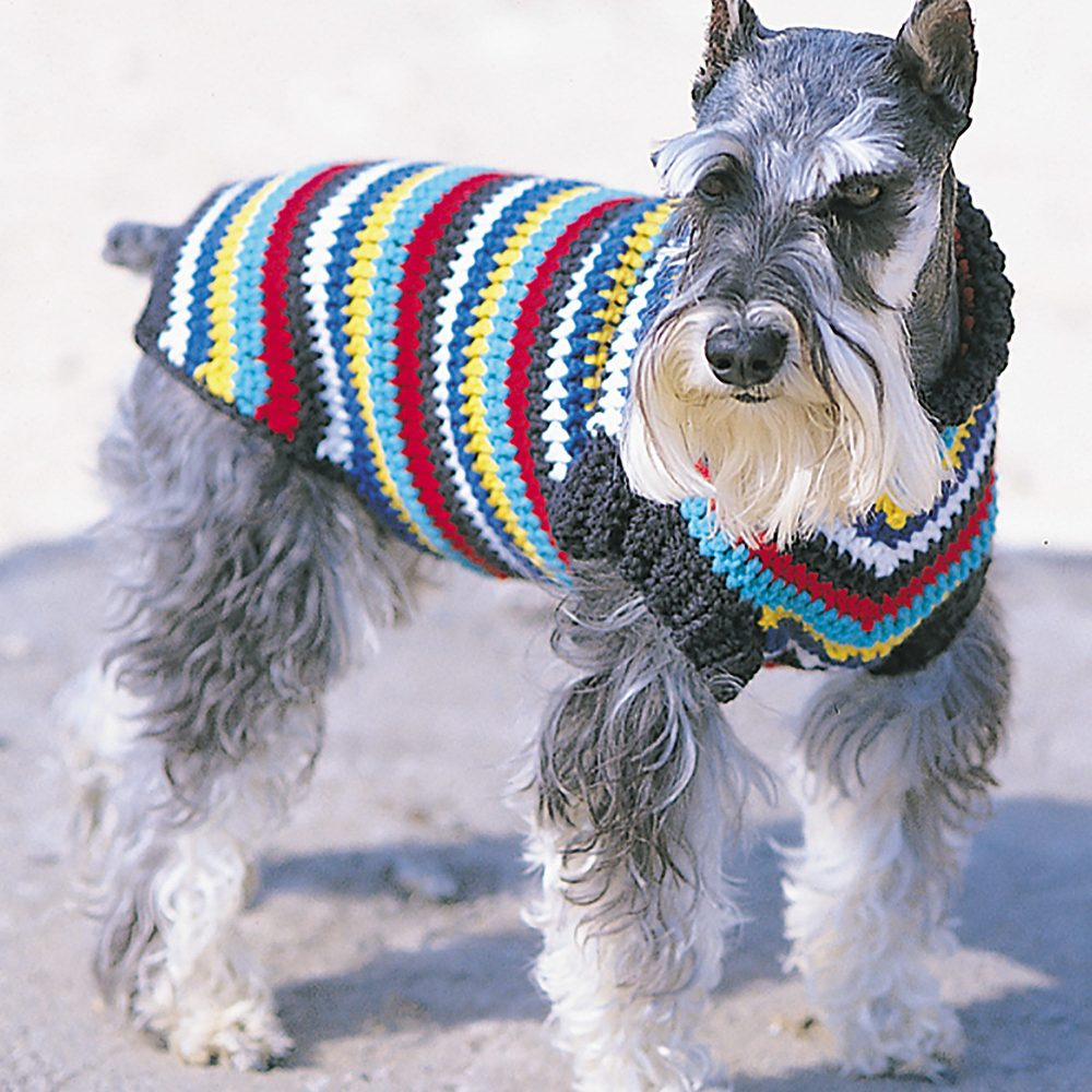 Bernat Crochet Dog Coat