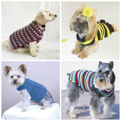 12 Crochet Dog Sweater Patterns For Your Fur Babies