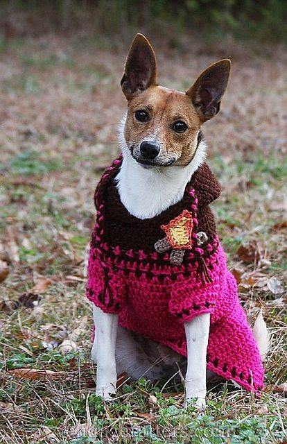Custom-Fit Dog Sweater Crochet Pattern