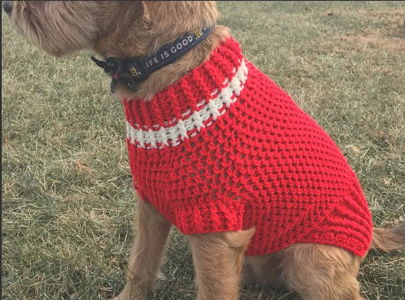 Doggy Sweater Crochet Pattern