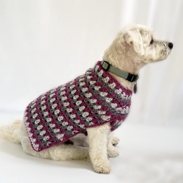 Well Dressed Dog Coat Crochet Pattern