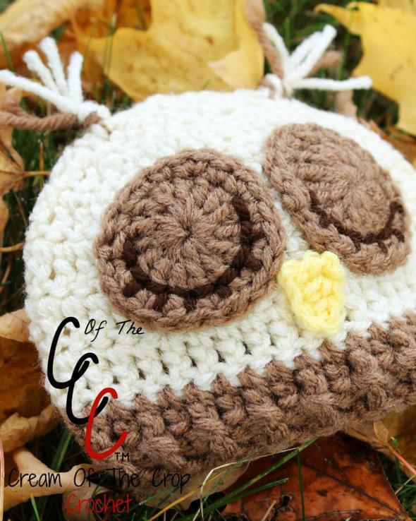 Preemie Newborn Sleepy Owl Hat